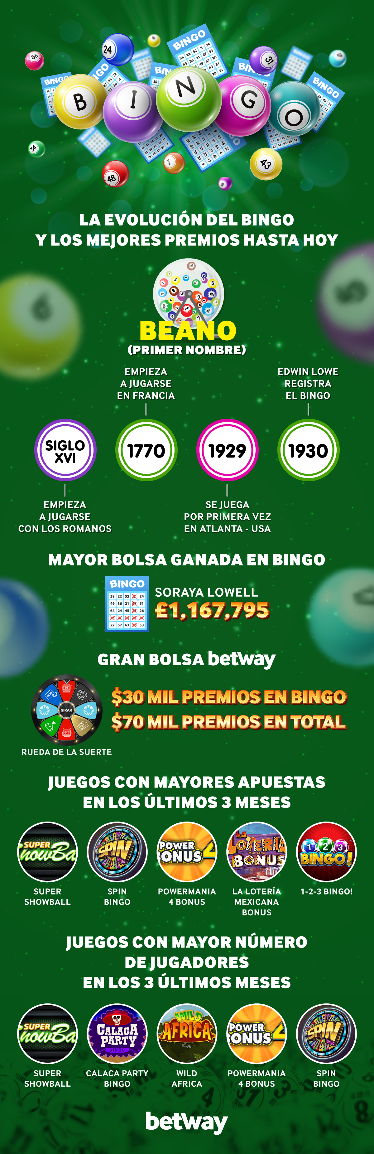 Bingo Infografía.